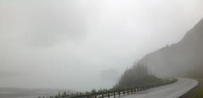 Foggy Alaska
