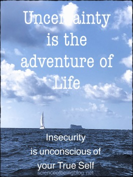 Uncertainty and insecurity
